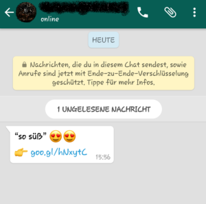 WhatsApp-Fake