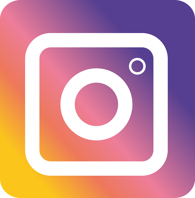 Instagram-Spam-Follower (jieun1605/pixabay)