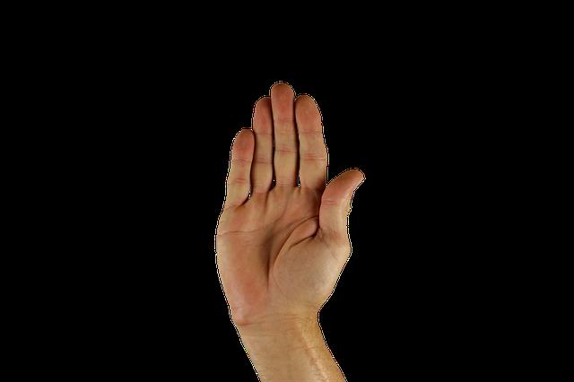 Getarnte Rechnung: Handelsregistereintrag HANDELS Ger d.o.o. (WerbeFabrik/Pixabay)