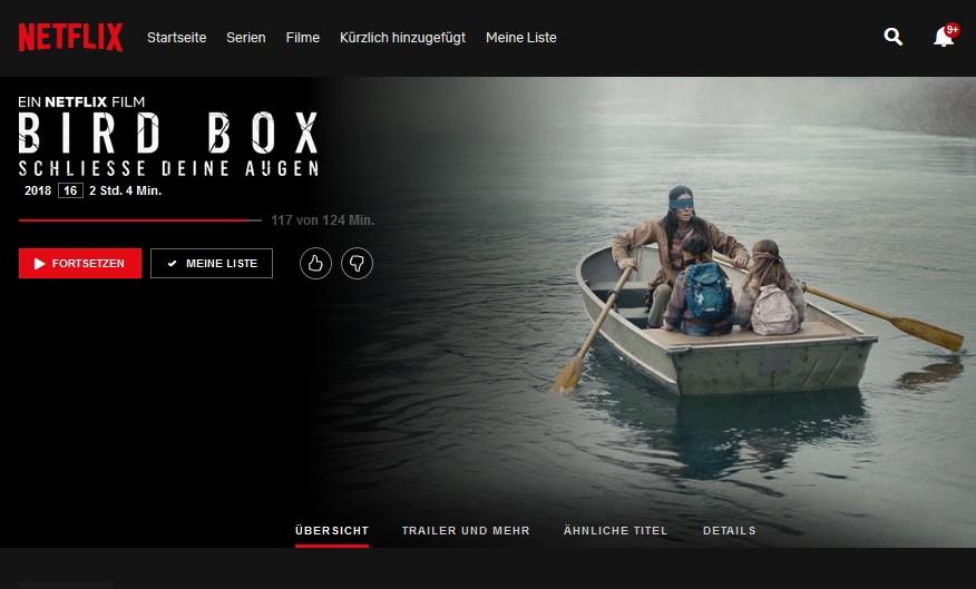 Bird Box Challenge: Vorsicht! (Screenshot Netflix)