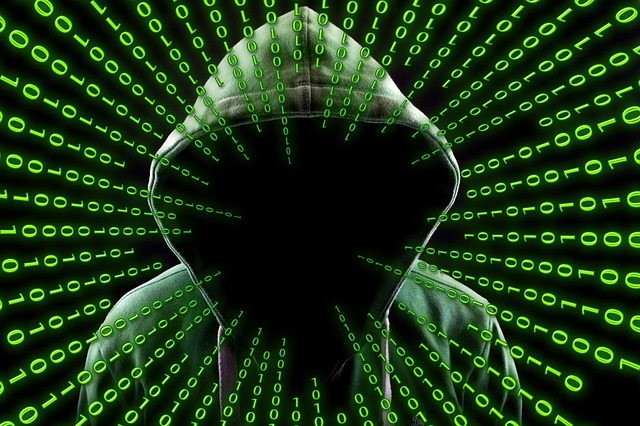 Vorsicht vor Emotet-Trojaner! (geralt/Pixabay)
